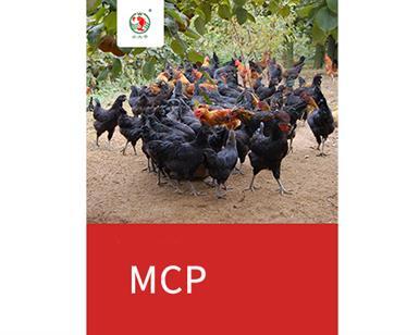 3鸡的海报1